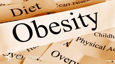 obesity-words-diet-paper-overweight-650x